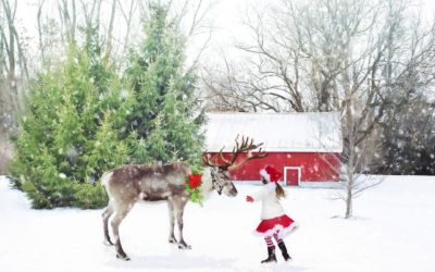 10 Best White Christmas Destinations with Kids