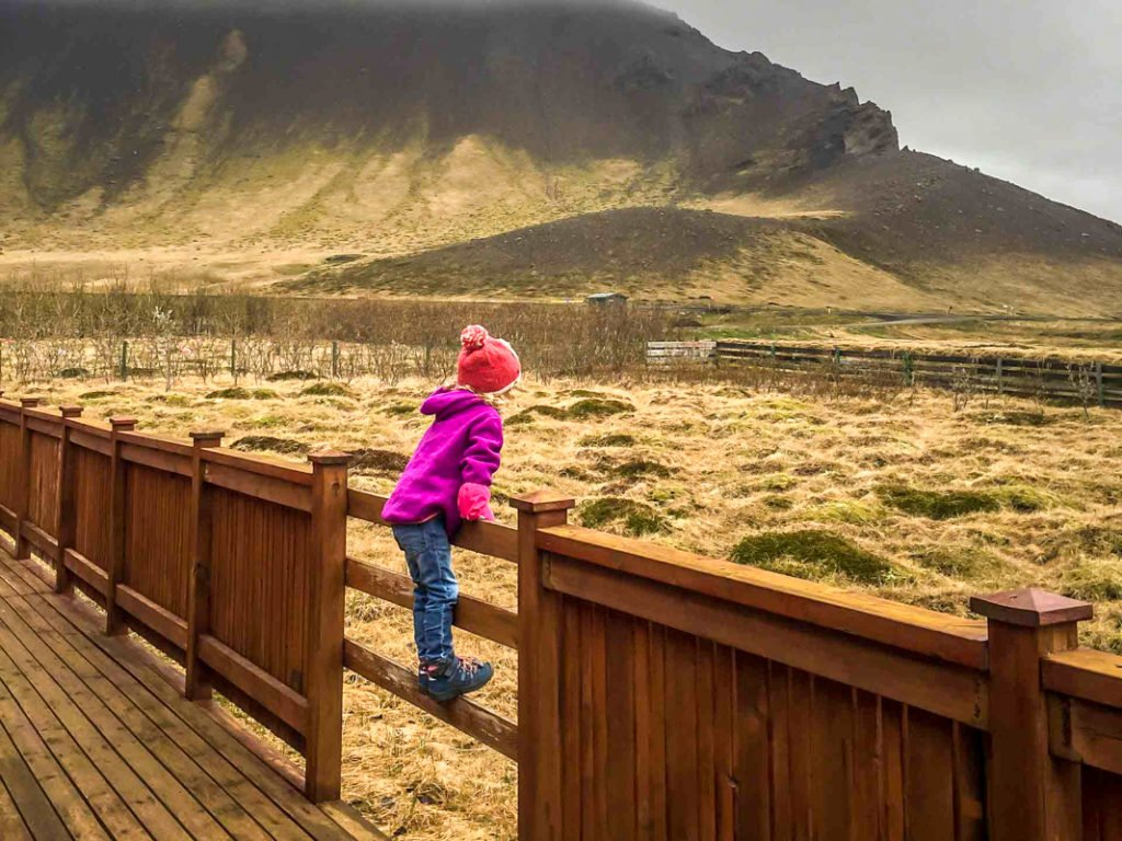 Airbnb Iceland family with kids